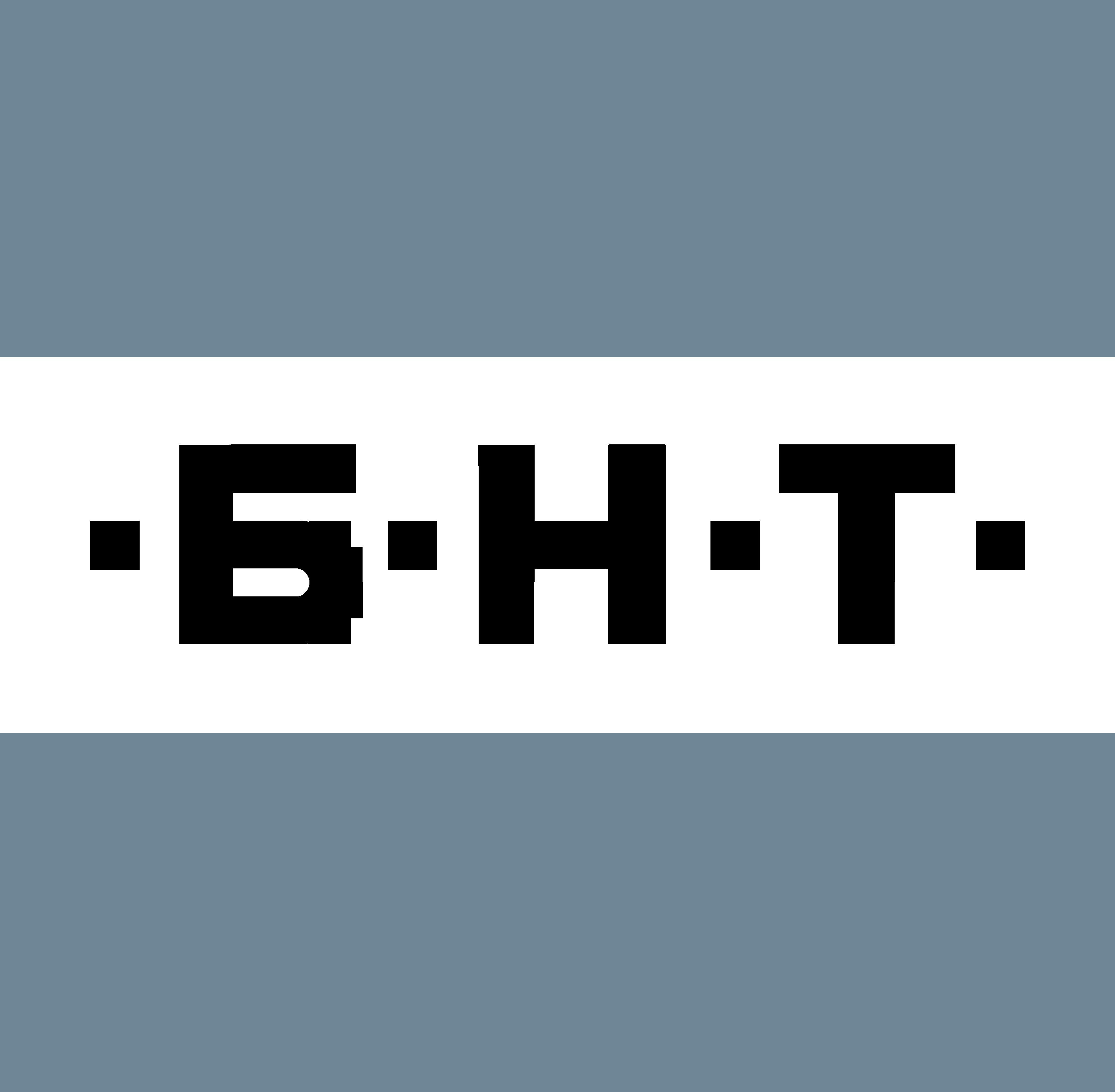 BNT_logo